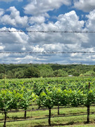 Texas Hills Vineyard view while installing Air Conditioning Units