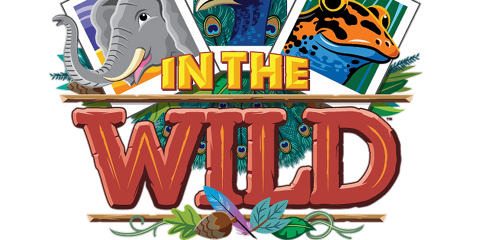 Into The Wild | VBS 2019
