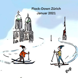 Flockdown-Zürich Januar 21