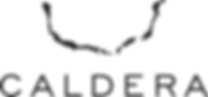 Caldera_logo_black_ver.png