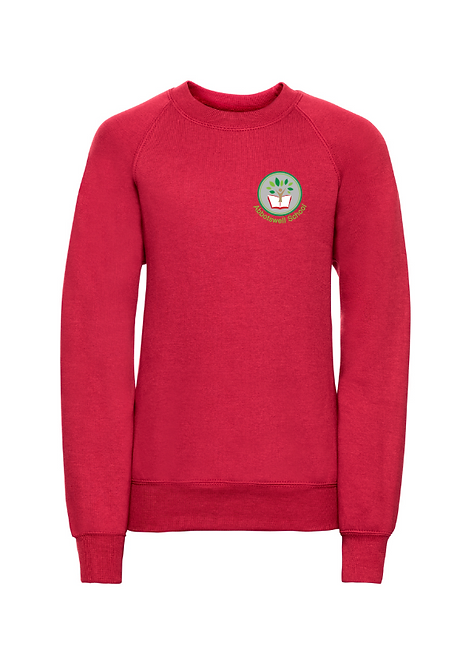 P7 Red Russell School Jumpers