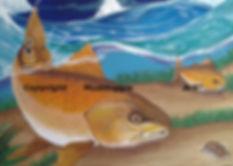 Redfish Wrangler Print by Muddoggie