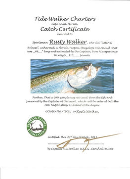 Catch and Release Certifcate