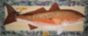 Redfish Painting