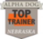 Top Huning Dog Traner Nebraska