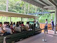 セブ島動物園/セブサファリ/セブ島サファリ/セブ島ツアー/セブ島オプショナルツアー/セブ島野生動物