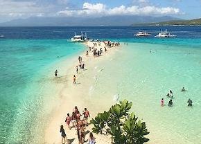 ジンベイザメ+スミロン島 セブ島オプショナルツアー/セブ島ツアー【セブセレクトツアーズ】