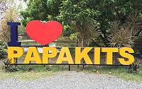 パパキッツ/水上アスレチック/ジップライン/半日ツアー/セブ島ツアー/セブ島オプショナルツアー