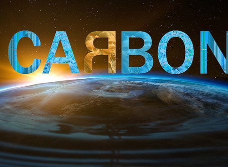 Nadia Saponara: Bloomberg Coal Campaign