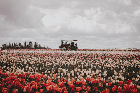 April 2019 | Woodburn, Oregon