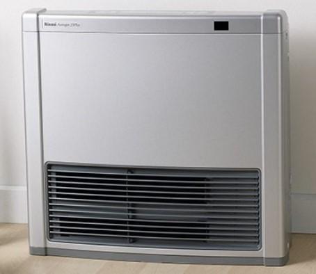 Rinnai Heater