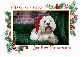 Christmas Card Template 1
