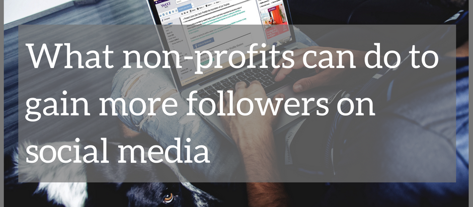 What non-profits can do to gain more followers on social media
