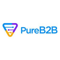 PureB2B (1)