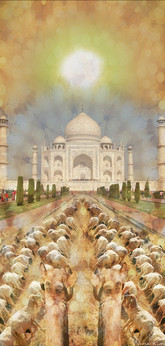 India by Noma Kim