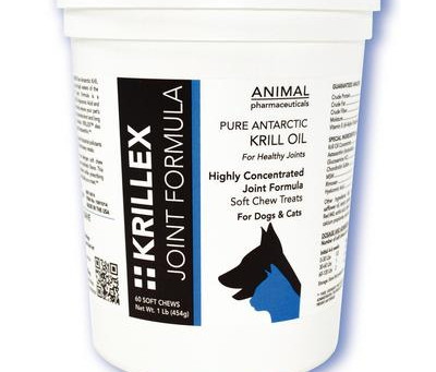 Pet Supplements To Help Ease The Aging Process