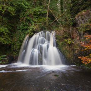 Autumn in Argyll