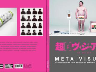 meta visual