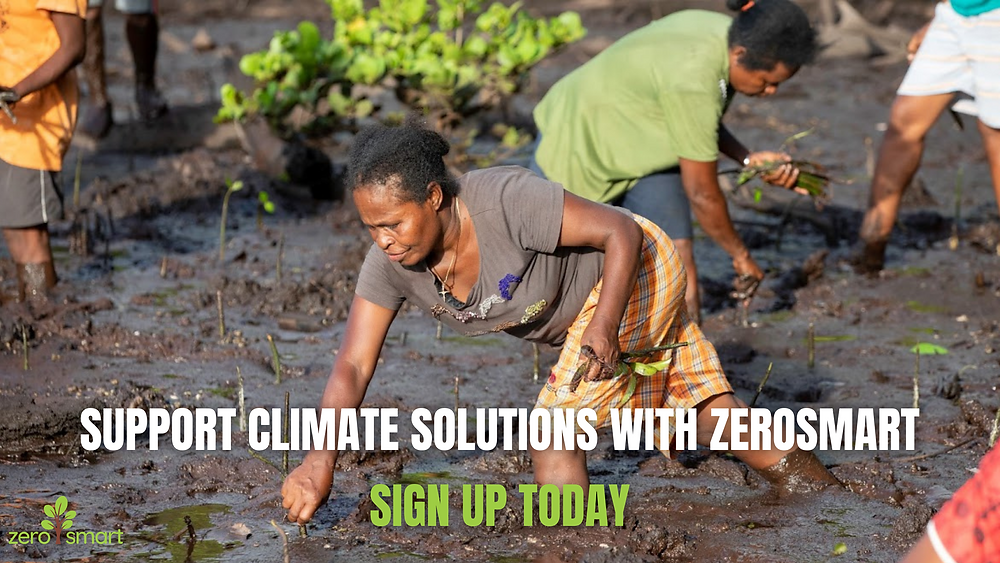 """A woman planting mongrove trees in Madagascar with the text """"support climate solutions with ZeroSmart. Sign up today"""""""