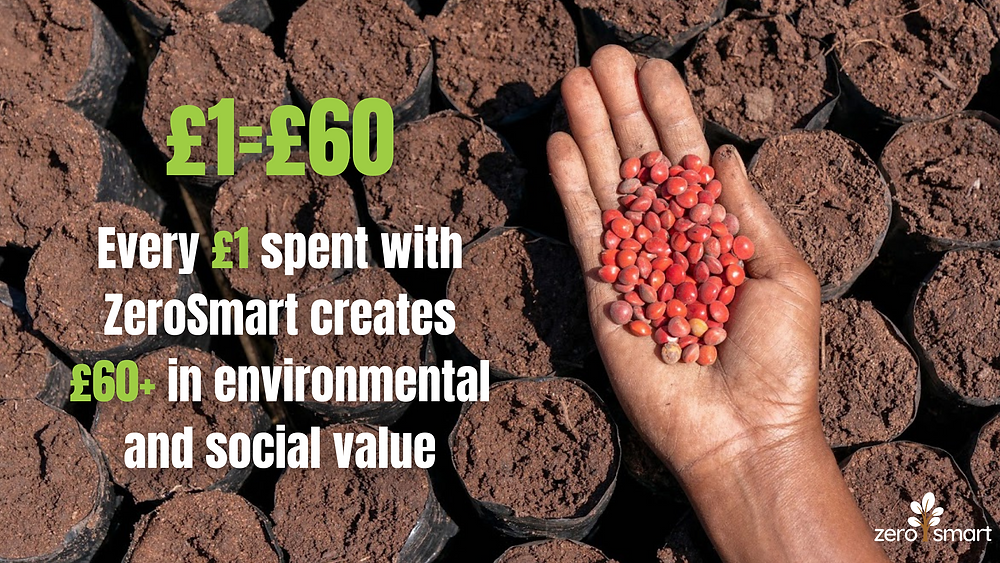 """imagine of trees being planted in madagascar with text reading """"£1=£60. Every £1 spent with ZeroSmart creates £60+ in environmental and social value"""""""