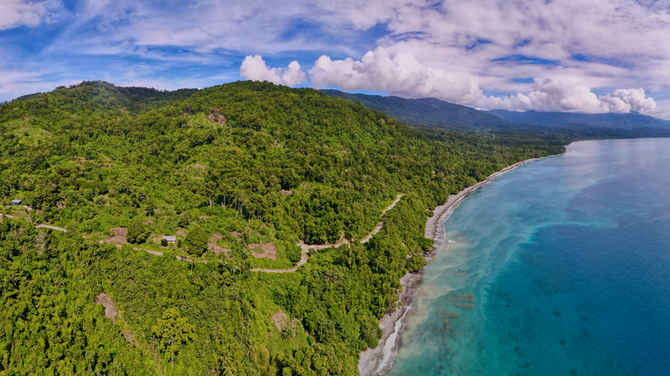 Protecting tropical forests in Papua New Guinea