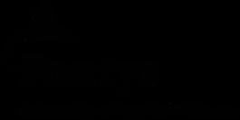 Fontys-Logo.svg_.png