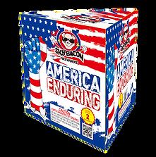 FN144 America Enduring.png