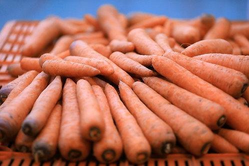 Carrot ( Mahabaleshwar )