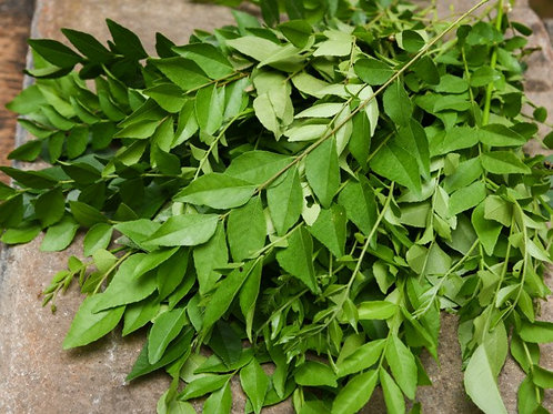 Curry leaves ( Kadi patta )