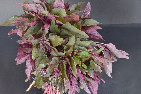 Amaranthus leaves - Red (Laal Maat)