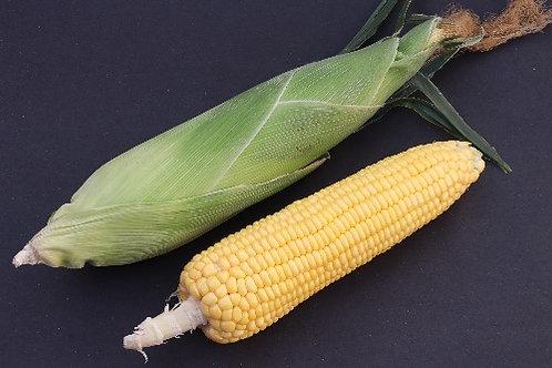 Sweet corn ( Makka )