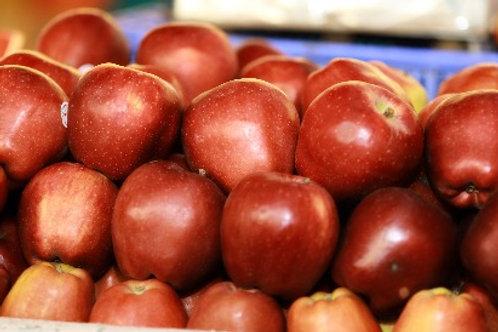 Apple ( Royal Gala )