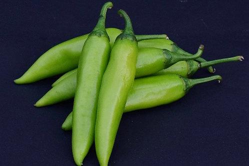Chilli ( Bhavnagari Mirchi )