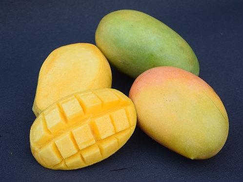 Mango - Keshar