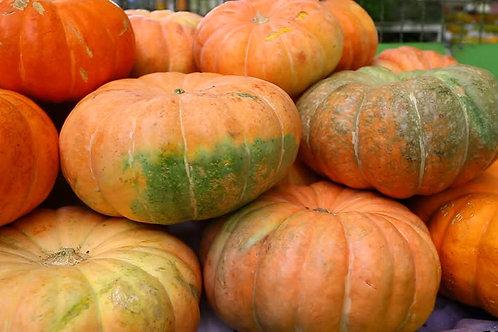 Pumpkin ( Chakri Bhopla )