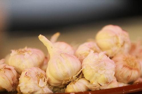 Garlic ( Lasoon )