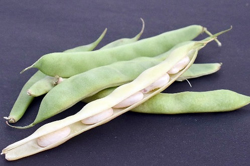 Beans ( Ghevda )