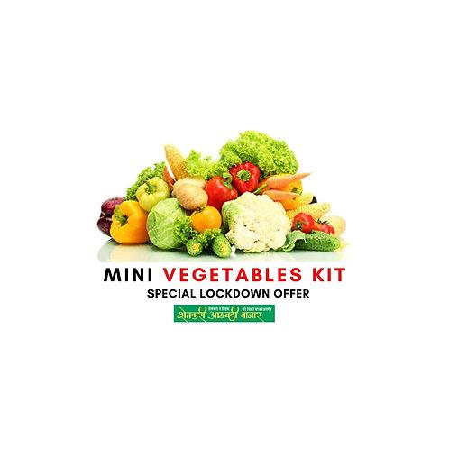 MINI Vegetables Kit