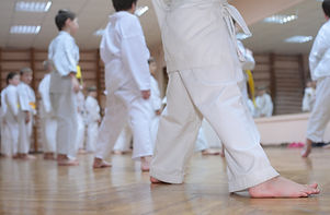 Karate Boys In Sport Hall.jpg
