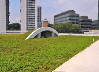 When It Comes To Green Roofing, Australia, Give The Sun And Earth A Helping Hand