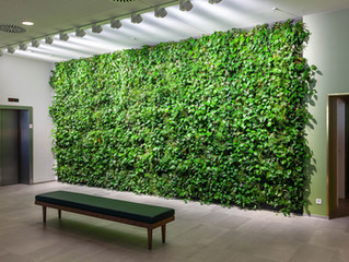 The Beauty Of Green Walls
