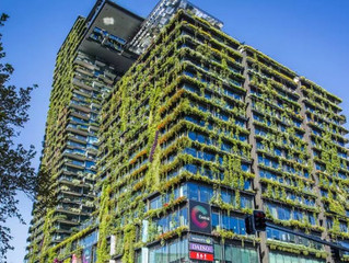 How Green is my Building Green Roofs, Facades & Waterproofing