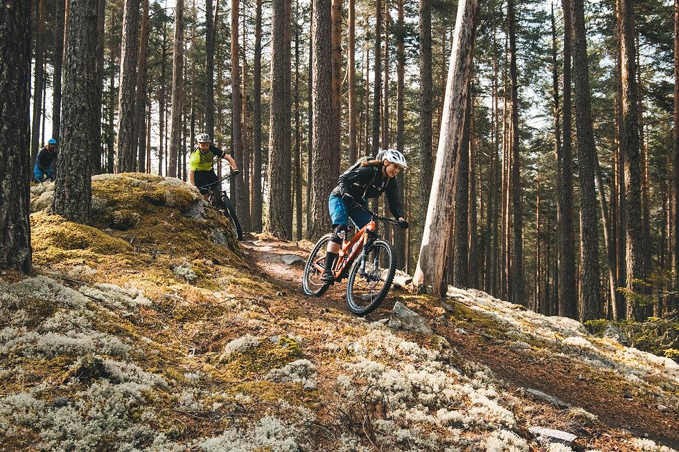 Sykling i Nesbyen, Trailhead Nesbyen, Knut Lønnqvist.jpg