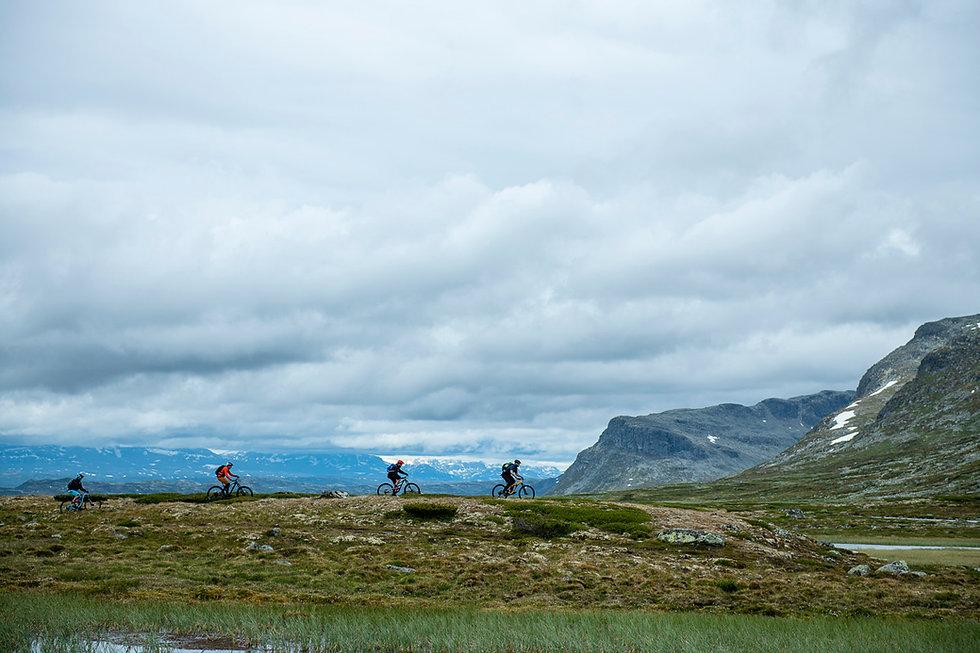 Guidet stisykling på Ål, All Adventure, Vegard Breie.jpg