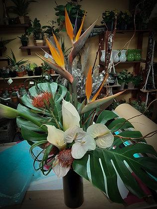 Arrangement tropical