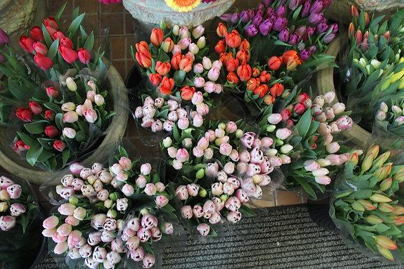 Bouquet de 30 tulipes