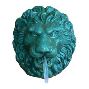 Andrea Lion