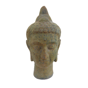 6609AP Siddhartha