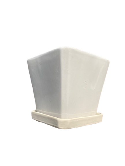 NS207WH Square and Saucer