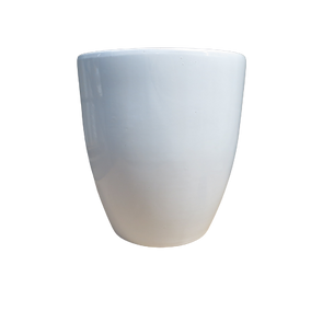 J083WH2 Coron Egg White